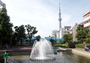 co-lab墨田亀沢:大横川親水公園